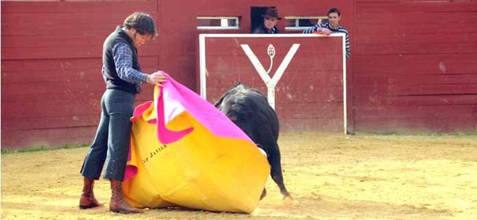 Corpas torea a la verónica en la finca Yerbabuena bajo la atenta mirada del ganadero, José Ortega Cano.