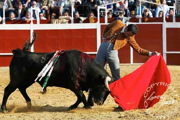 Manuel Jesús ' El Cid'.