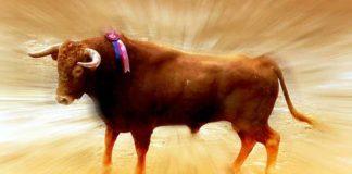 El toro en la Feria de Abril, una gran incógnita.