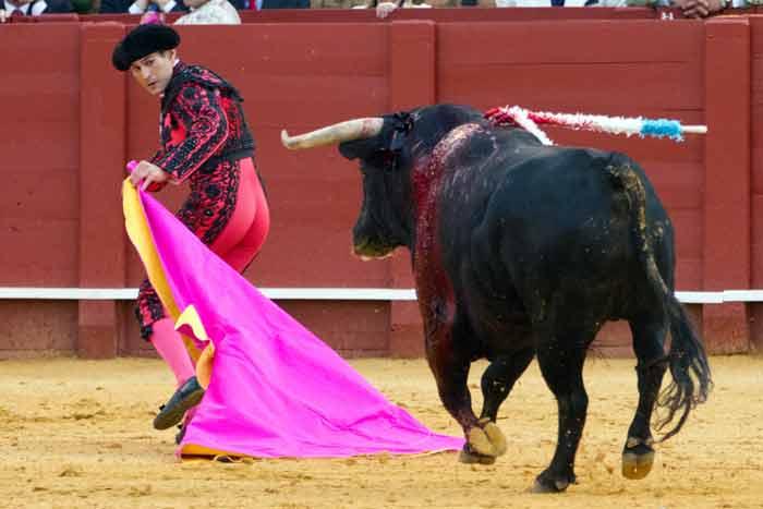 Cerrando al toro a una mano.