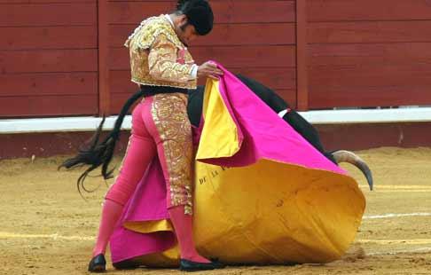 Excelente lance a la verónica de Morante de la Puebla a su primero. (FOTO: Gallardo/badajoztaurina.com)