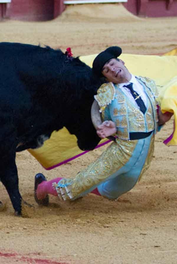 Dramática cogida de Rafael Cerro a portagayola; no hubo consecuencias. (FOTO: Paco Díaz/toroimagen.com)