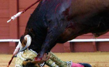 El Cid ha sufrido una espectacular voltereta en la Maestranza esta tarde, sin consecuencias. (FOTO: lopez-matito.com)