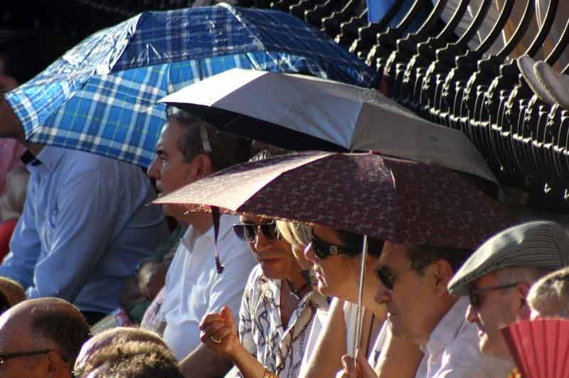 Otros preferían resguardarse del sol.
