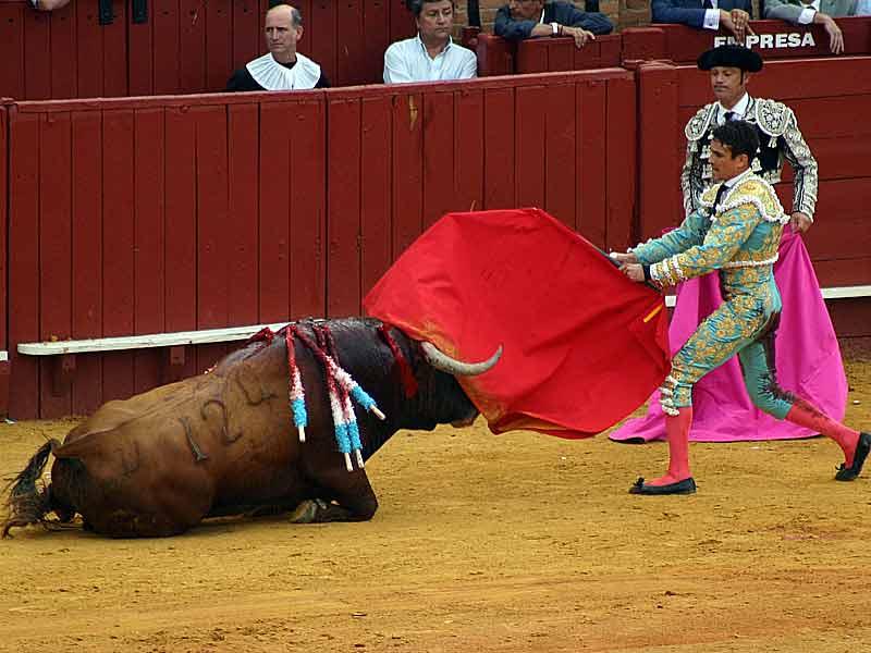 El tercero, de Juan Pedro Domecq, se murió él solito.