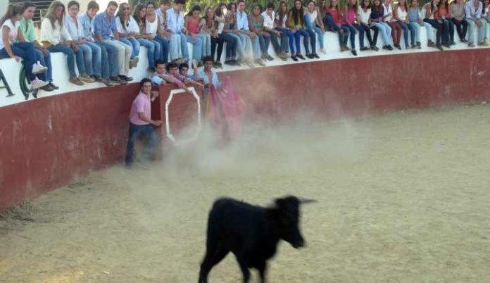 Primer acto masivo de la nueva plataforma 'Juventud Taurina de Sevilla'.