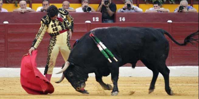 Sentido muletazo de Morante hoy en Murcia. (FOTO: Guillermo Lorente)
