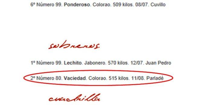 Captura de la web de la empresa Pagés del sorteo de la tercera de San Miguel; aún aparece el segundo sobrero con edad de novillo, tal y como se distribuyó a todos los medios.