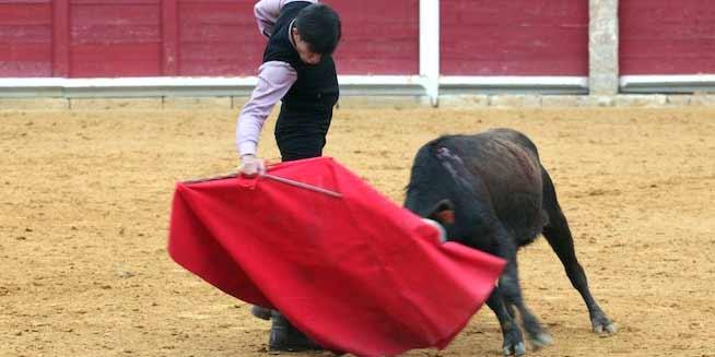 El sevillano Daniel Soto toreando en la final del Bolsín 'Tierras de Zamora', celebrado en Toro.