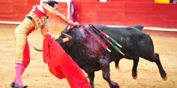 Estocada de El Cid esta tarde en Valencia. (FOTO: Alberto de Jesús/mundotoro.com)
