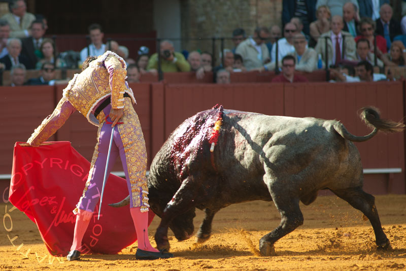 Manuel Jesús 'El Cid'.