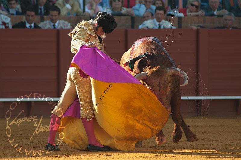 Morante ha destacado hoy de nuevo con el capote. (FOTO: lopezmatito.com)