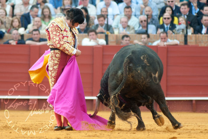 La impactante media de remate de Morante a pies juntos al cuarto, una memorable escultura viva al arte del buen torear. (FOTO: lopezmatito.com)
