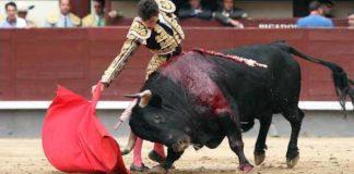 Daniel Luque, esta tarde en Madrid. (FOTO: las-ventas.com)