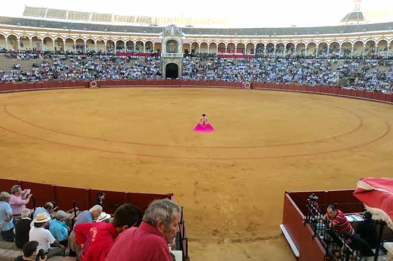 El inmenso ruedo de la Real Maestranza visto desde toriles.
