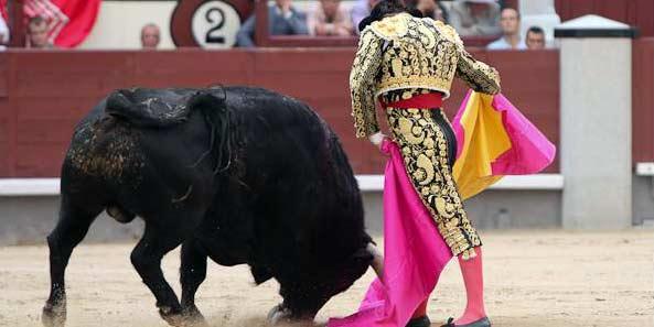 Morante esta tarde en Madrid, en una de sus inconfundibles verónicas. (FOTO: las-ventas.com)