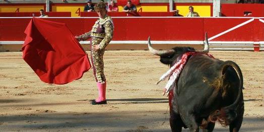 Manuel Escribano esta tarde en Pamplona. (FOTO: mundotoro.com)