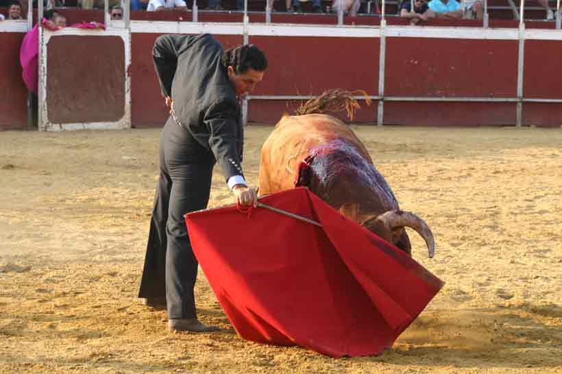 Última faena de Tomás Campuzano.
