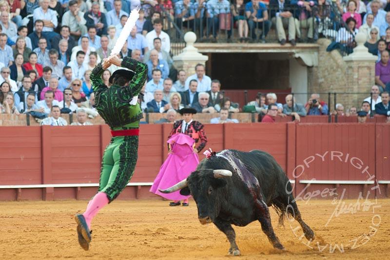 El banderillero Javier Ambel.
