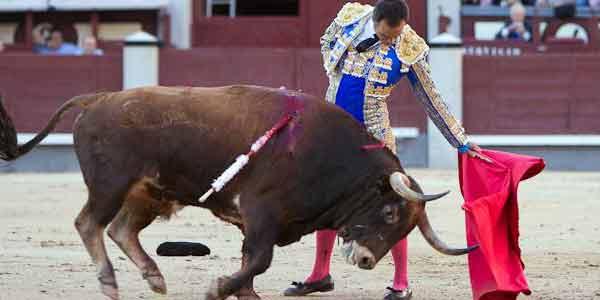 Gran toreo de El Cid esta tarde en Las Ventas. (FOTO: las-ventas.com)