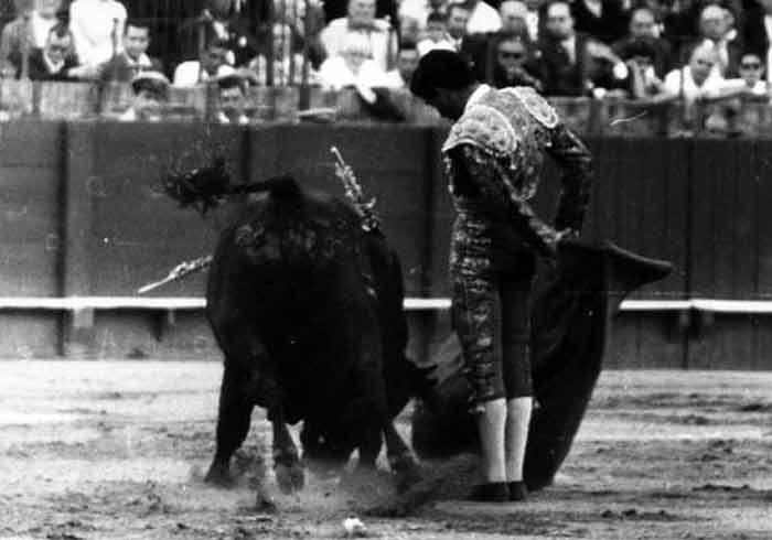 Curro Puya.