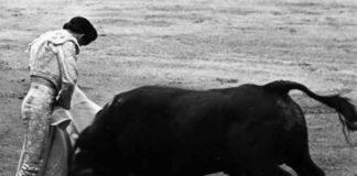 Curro Puya destacó en su toreo con el capote. (FOTO: Arjona)