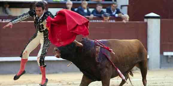Momento de Juan Ortega esta tarde en Madrid. (FOTO: las-ventas.com)