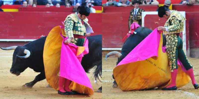 Dos momentos de la excelente actuación de Morante con capote hoy en Valencia. (FOTO: Alberto de Jesús/mundotoro.com)