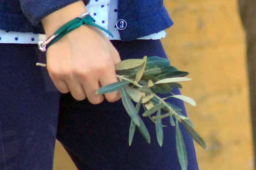Los seguidores del sevillano Oliva Soto regalaban ramitos de olivo.