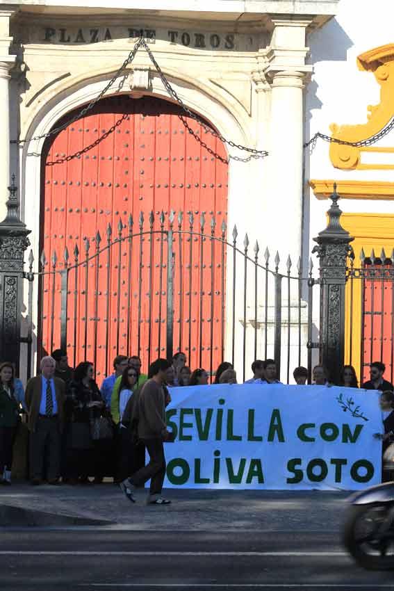 La pancarta de apoyo a Oliva Soto junto a la Puerta del Príncipe.