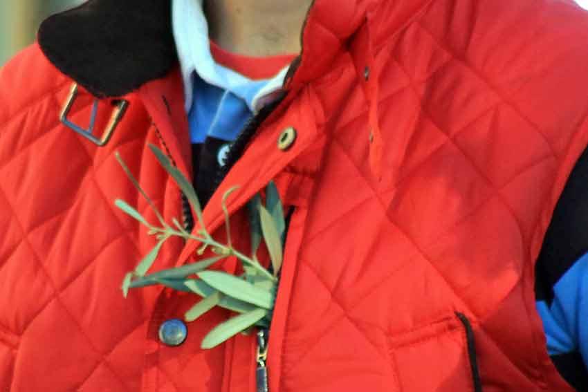 Los partidarios de Oliva Soto se identifican con las hojas de olivo en las solapas.