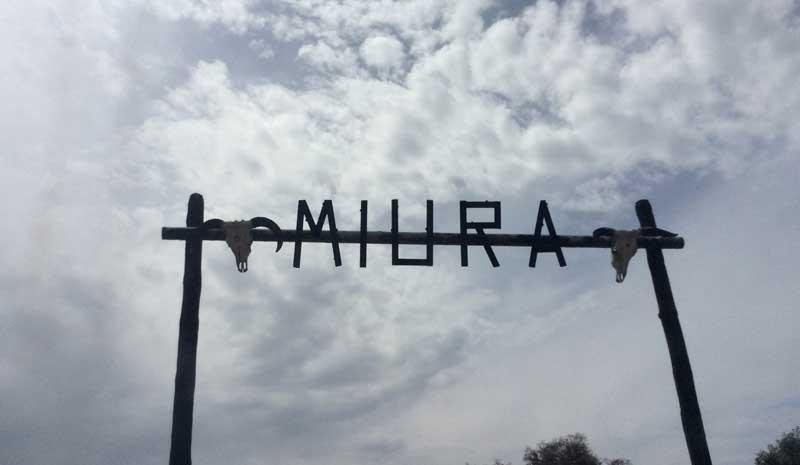 Portalón de entrada a Miura.