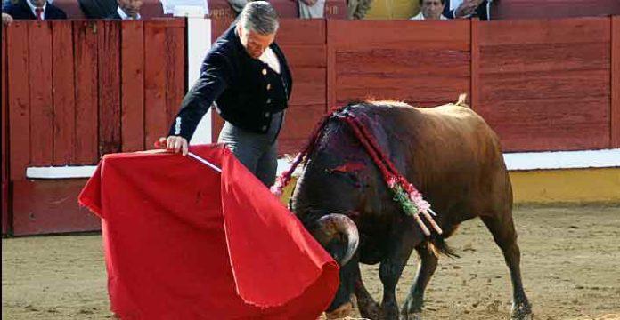 Excelente toreo de Espartaco hoy en Badajoz. (FOTO: Alfonso Plano / badajoztaurina.com)