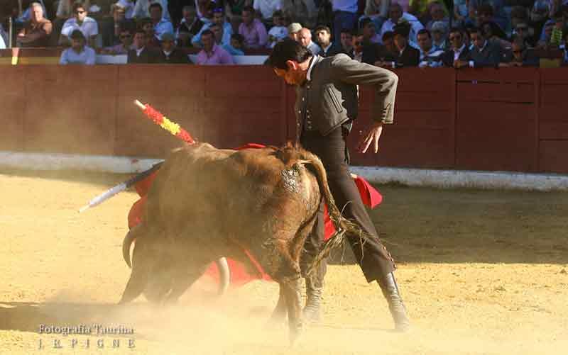 Torres Jerez.