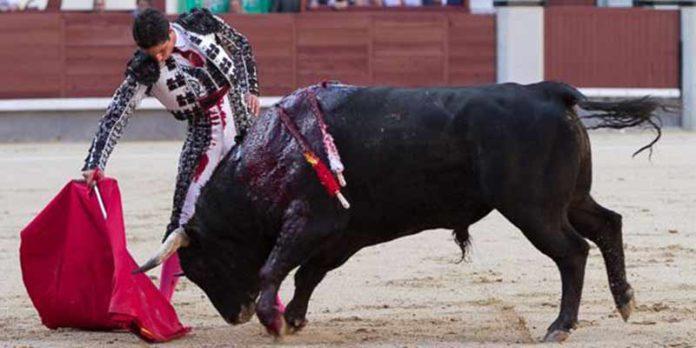 Un derechazo de Mario Diéguez esta tarde en Madrid. (FOTO: las-ventas.com)