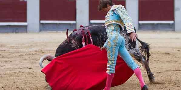 El novillero Lama de Góngora esta tarde en Madrid. (FOTO: las-ventas.com)