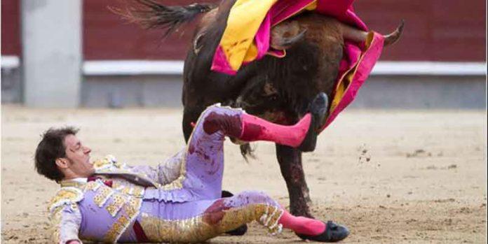La voltereta de Nazaré en Madrid. (FOTO: las-ventas.com)