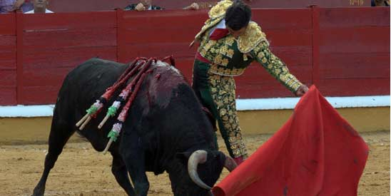 Morante toreando hoy en Badajoz. (FOTO: Gallardo/badajoztaurina.com)