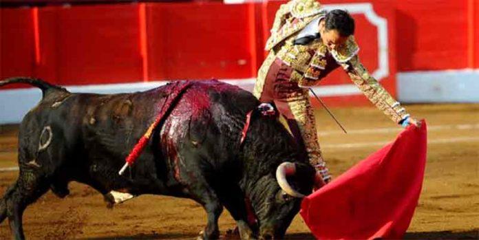 El Cid, esta tarde en Santander. (FOTO: Juan Manuel Serrano / mundotoro.com)