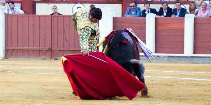 Morante, hoy viernes en Valladolid. (FOTO: mundotoro.com)