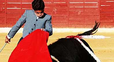 El novillero utrerano Miguel Falcón.
