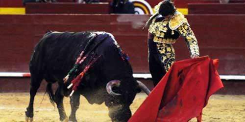 Morante, toreando al quinto hoy en Valencia.