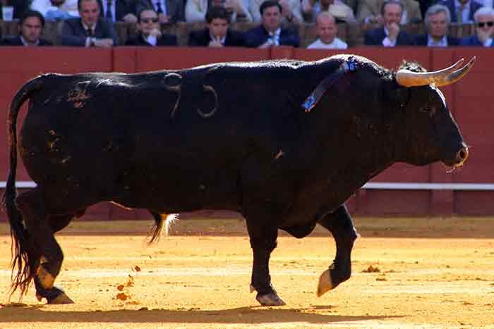 El primero de Juan Pedro Domecq.