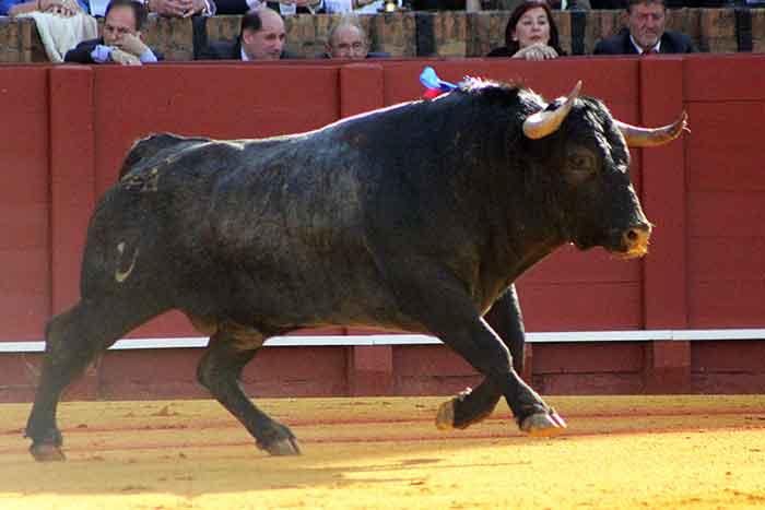 El segundo de Victorino Martín.