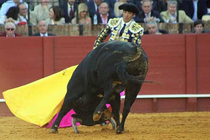 Escaso fondo de los toros de Juan Pedro Domecq.
