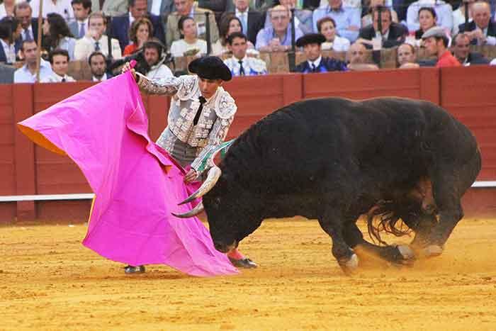 Curro Javier.