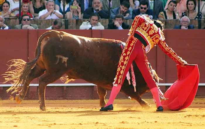 Finito de Córdoba.