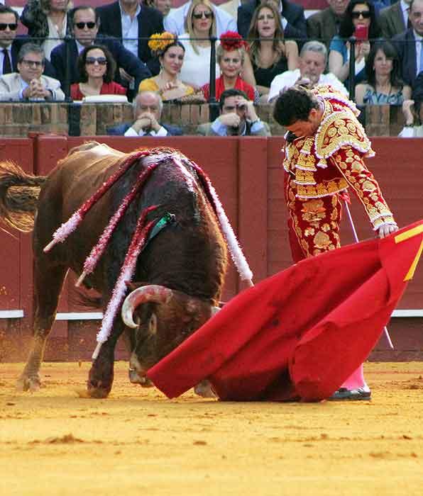 Un natural de Finito de Córdoiba al toro de El Pilar que ha abierto el festejo. (FOTO: Javier Martínez)