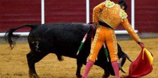 Morante, en un muletazo hoy en Brihuega. (FOTO: Julián López/mundotoro.com)