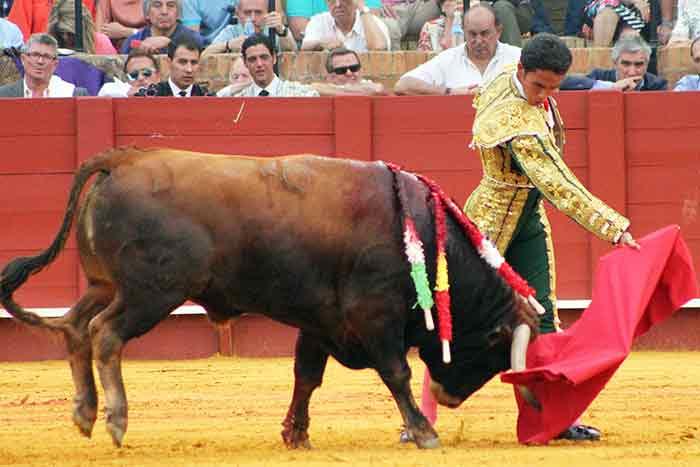 José Ruiz Muñoz.